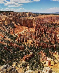 This place is ridiculous. #BryceCanyonNationalPark, #Bryce, #Utah, #NationalPark, #FindYourPark, #Desert, #Southwest, #Landscape, #Scenic, #travel, #seetheworld, #natgeo, #sky, #geology, #editorial, #getoutside, #rei, #explore, #vacation, #destination, #f (Nate Loper - #ArizonaGuide) Tags: southwest grand canyon arizona flagstaff outdoors landscape nature getoutside travel scenic royalty free to use seetheworld photography editorial sky clouds park geology desert adventure explore guidelife arizonaguide