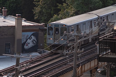 Riding the 'L' (Trains) - CTA - Chicago Street Art (trsl1234) Tags: cta chicago train graffiti streetart