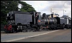 NG87 crossing the Britannia Bridge (zweiblumen) Tags: ng87 garratt 262262 steam locomotive 1936 1937 sociétécockerillseraing welshhighlandrailway rheilffordderyri southafricanrailways ngg16 suidafrikansespoorweë suidafrikaansespoorweë porthmadog gwynedd wales cymru uk britanniabridge canoneos50d polariser zweiblumen