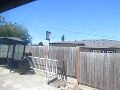 IMG_8278 (Andy E. Nystrom) Tags: bellevue washington wa bellevuewashington