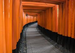 Fushimi Inari Kyoto (jacksonb97) Tags: fushimi inari kyoto early morning japan sony loxia 21mm zeiss temple history