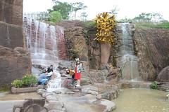 _DSC6675 (Quyr) Tags: dalat vietnam green smoke frog cloud tree forest langbiang lamdong portrait thunglungvang duonghamdatset