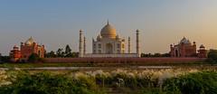 Taj Mahal (Michael J Doherty) Tags: marble tomb mosque agra india tajmahal