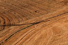 Paglia 1 (luporosso) Tags: natura nature naturaleza naturalmente nikon nikond500 nikonitalia nikonclubit scorcio scorci country countryside geometrie geometry rurale colors colori