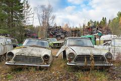 Junkyard Life (mariburg) Tags: rotten marode alt old rostig rustycars canonef2470mmf28liiusm canoneos6d auto scrapyard schrottplatz ford taunus