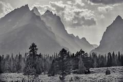 Grand Teton National Park - Jenny Lake (Rolf Enderes) Tags: yellowstone grandteton jennylake mountains trees grass sky clouds