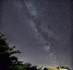 Milky Way - Backyard, 2018.08.31. (pavelandras) Tags: nikon d7500 milky way dark sky night tree house tamron 1750 f28