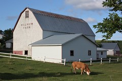 Country Scene (Craigford) Tags: longriver pei canada farm cow barn rural country