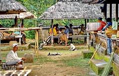 Bali, Rural Life (gerard eder) Tags: world travel reise viajes asia southeastasia indonesia bali rural rurallife village paisajes panorama people peopleoftheworld natur nature naturaleza landscape landschaft outdoor