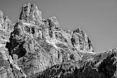 _DSC4751dw1 (dede0561) Tags: canazei neve montagna alberi pini paesaggio versantedellamontagna cielo bn bw bosco valdifassa roccia legno dolomiti blackandwhite lucieombre passosella