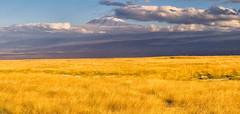 Kibo Summit,  Mount Kilimanjaro, Tanzania (Ray in Manila) Tags: amboseli kenya kilimanjaro kibo mountain tanzania snow grass savanna safari volcano africa tropical glacier nationalpark nature stratovolcano mawenzi peak uhurupeak eos650d efs24mm hdr panorama plateau mount saddleplateau riftvalley