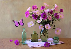 Dancing Butterfly (Esther Spektor - Thanks for 12+millions views..) Tags: stilllife naturemorte bodegon naturezamorta stilleben naturamorta composition creativephotography artisticphoto tabletop summer flowers bouquet butterfly vase bottle napkin glass ambientlight reflection pink green magenta teal beige estherspektor canon