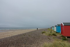 Beach Huts (nz_willowherb) Tags: scotland moray coast findhorn bay beach huts forsale shingle sand