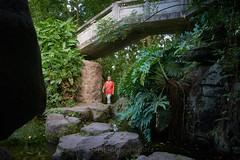 孙文纪念公园 08 (C & R Driver-Burgess) Tags: woman one alone under bridge stone rock path stepping grotto ferns vegetation plants forest explore find