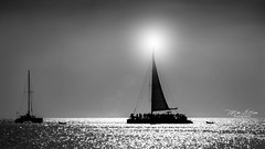 The Lighthouse Party Boat (mikederrico69) Tags: sailboat boat silouhette bw blackandwhite sky summer sunset sun dusk sea seaside beach party reflections relaxation reflection trip travel tropic tropical vacation ocean