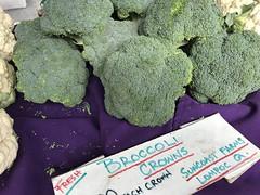 Broccoli from Suncoast Farms (TomChatt) Tags: food farmersmarket