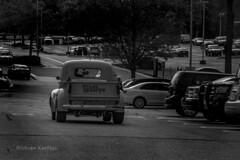 Truck DSC_9195 (ikerekes81) Tags: truck car carsandcoffee carsandcaffeemd cornerbakery outdoor outside old vehicle vintage vintagecar vintagetruck maryland md motorvehicle motor blackandwhite nikon nikond500 d500 istvankerekes istvan ik kerekes streetphotography