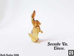 Seconde Vie Lièvre - Barth Dunkan. (Magic Fingaz) Tags: barthdunkan coelho conejo hare hase kelinci králičí królik lièvre nyúl origami paperfolding rabbit tavşan κουνέλι кролик खरगोश 토끼 ウサギ 兔子