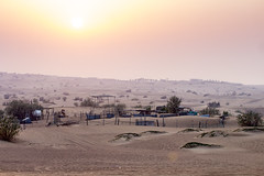 Sunset in Emirates - Desert (Piotr Kowalski) Tags: dubai uae unitedarabemirates emirates dunes sand piasek pustynia dubaj emiraty wakacje summer activity