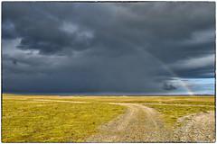 On the way to Stokksnes (2) (RKop) Tags: stokksnespenisula raphaelkopanphotography d500 1020nikkoraf‑pdx iceland vesturhorn