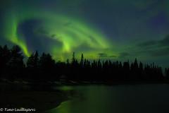Aurora (timo.lauttajarvi) Tags: landscape laplandfinland lapland finland northernlights aurora auroraborealis