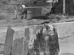 xxDSCN3100 (Priyamvada Athale) Tags: plywood
