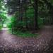 As-tu choisi ta voie ?/Have you made the choice of your path?/Har du valt din väg?