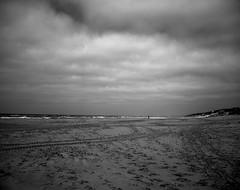 Empty beach (Rosenthal Photography) Tags: dänemark washis50 20180706 meer schwarzweiss mamiya7 asa50 6x7 epsonv800 mittelformat urlaub strand dünen ff120 nordsee houvig analog rodinal12520°c11min landscap seascape northsea sea beach dunes mood blackandwhite summer july denmark danmark mamiya 80mm f4 washi filmwashi washis rodinal 125 epson v800