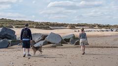 055-P1030840 LR (1gl) Tags: 2018 carpet carpets killer gumbo norfolk wintertononsea beach dogs coast