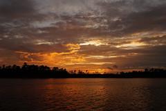 ...over the horizon (Jim Atkins Sr) Tags: sunset spectacularsunsetsandsunrises cloudsstormssunsetssunrises northcarolina northwestcreek fairfieldharbour clouds cloudscape sony sonya58 sonyphotographing sky
