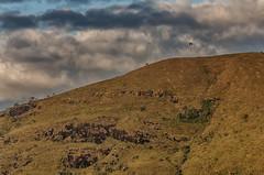 Montanha e paraglider (mcvmjr1971) Tags: vermelho baependi parque estadual da serra do papagaio minas gerais brasil nikon d7000 mmoraes viagem travel trilhandocomdidi campo area zona rural mineira sul