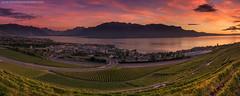 After A Long Wait @ Vevey, Switzerland (Avisekh) Tags: unesco vevey vineyard pano switzerland hometown color panorama nikon 2470 rrs lee gnd polarizer wwwavisekhphotographycom tripod d810