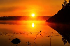 Rängen Vårdnäs Sunrise (bobban25) Tags: canon eos 80d efs18135mm f3556 is stm östergötland sverige sweden scandinavia canoneos80d canon80d rängen vårdnäs sunrise orange tree silhouette siluett sten stone water lake sjö fog dimma