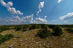 IMGP5972_DxO (stebock) Tags: dugopolje splitskodalmatinska kroatien hrv