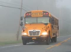 East End Bus Lines Inc. #0871P (ThoseGuys119) Tags: eastendbuslines orangecountytransitllc schoolbus maybrookny 2018 propane gasoline birdbus