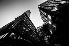 New YorkBW0089 (schulzharri) Tags: new york usa amerika america black white schwarz weis monochrome art city town stadt scyscraper hochhaus wolkenkratzer