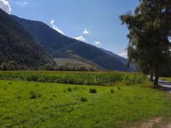20180823_151835 (k.atkos) Tags: brig visp switzerland nature landscape mountains schweiz valais walls st german