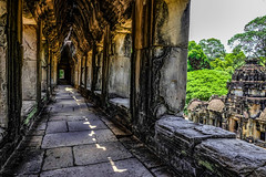 Angkor temple (stefano7s) Tags: angkor cambodia temple forest stone colonne