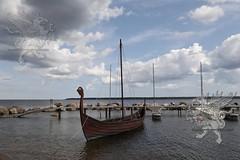 Tallinn_Riga 2018_parcoLahaema_30