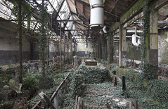 Jungle Factory (Sean M Richardson) Tags: abandoned factory jungle italy italia decay details derelict detail decayed design architecture old classic rust texture nature takes over vines trees pipes canon eos explore travel urbex exploration color colour colorful green red brown black white leading lines europe ruins ruinas photoshop digital contrast vibrant bright building 24mm prime