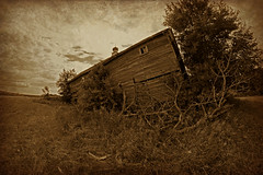 Falling Down (Dave Linscheid) Tags: barn abandoned old decay farm rural country agriculture texture textured watonwancounty mn minnesota usa 8mmrokinonlens fisheye