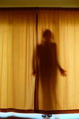 Invisible (eddi_monsoon) Tags: threesixtyfive 365 selfportrait selfie self portrait curtain