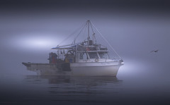 Vung Tau (Paul Rioux) Tags: marine sea ocean water fog gray fish boat crab vungtau commercial calm reflection victoria bc prioux