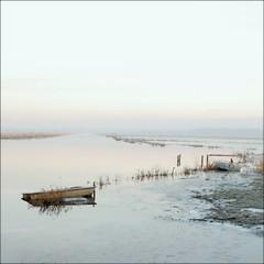 #40 (nicolas.eliard) Tags: carentan normandy swamp marais normandie manche lights sun matin morning gel hiver frozen nicolaseliard eliard square carré