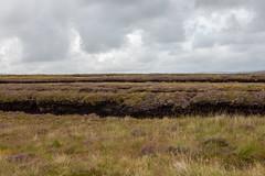 Bog (Greg Carey) Tags: donegal ulster ireland wildatlanticway coast