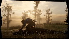 Red-Dead-Redemption-2-180918-021