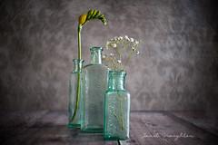 Bottles (Janet_Broughton) Tags: burnside35 lensbaby textured vintagebottles stilllife