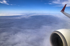 Outside View in the Airplane (Synghan) Tags: outsideview air airplane aircraft plane wings rightwing clouds cloudscape tway fly flying flight inflight photography horizontal outdoor colourimage fragility freshness nopeople foregroundfocus adjustment interesting awe wonder fulllength depthoffield aviation cabin bright midair aerialview elevatedview engine winglet overthehorizon canon eos80d 80d sigma 1770mm f284 dc macro lens 비행 비행기 항공 항공기 티웨이 구름 하늘 skyview sky blue cool