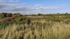 2_Titchfield Haven (Chris@YellowMopArt) Tags: titchfield haven meon shore solent coast