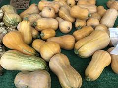 Honeynut squash from Weiser Farms (TomChatt) Tags: food farmersmarket